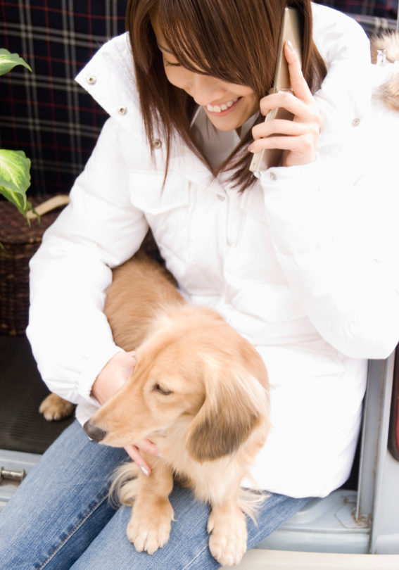 Woman using mobile phone and dog